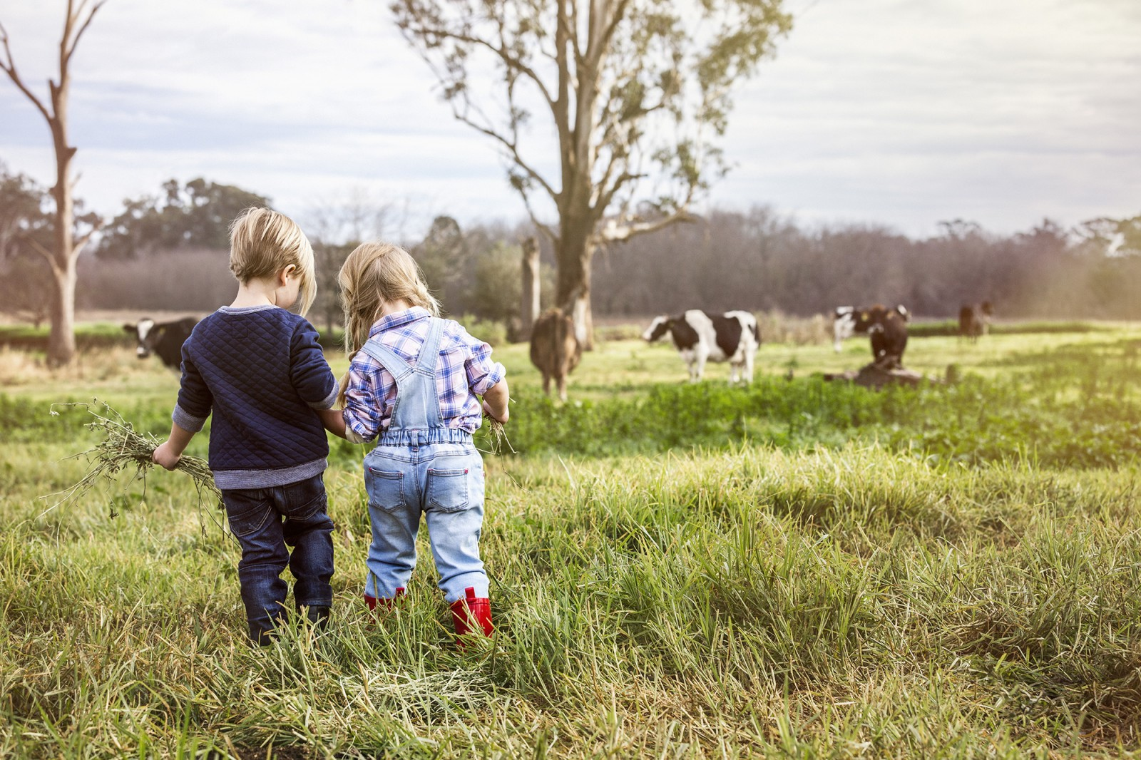 Michelle Young, Sydneys leading kids lifestyle and fashion photographer, photographs the latest lifestyle advertising campaign for Bellamys Organic. The kids lifestyle photography by Michelle Young...